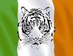 Irish-Flag-400